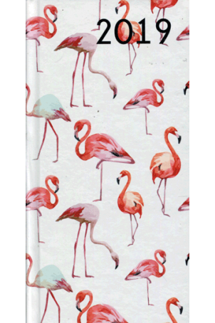 Agenda 2019: Flamingo's
