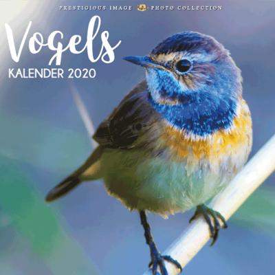 Kalender 2020: Vogels