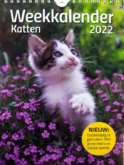Weekkalender Katten 2022