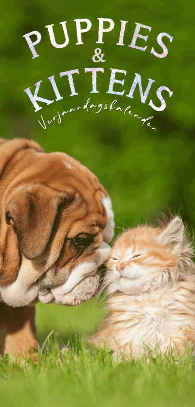 Verjaardagskalender Kittens & Puppies