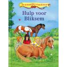 De ponygekke vriendinnen, Hulp voor Bliksem