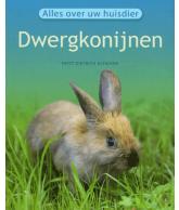 Alles over uw Huisdier Dwergkonijn