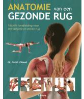 Anatomie van een gezonde rug