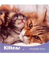 KALENDER 2018: KATTEN