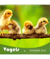 Kalender 2018 vogels