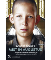 Mist in Augustus