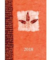 Agenda promise 2018 oranje