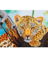 Diamond Dotz Leopard look