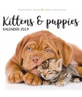 Kalender 2019: Kittens & puppies