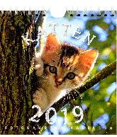 Postkaarten kalender 2019 Katten