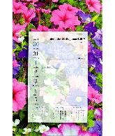 Weekblok kalender 2019 Petunia