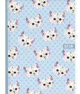 Agenda 2019 Cats