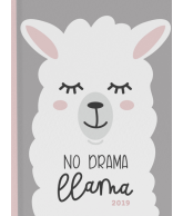 Agenda 2019 No Drama Lama