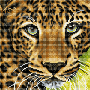 Framed crystal art kit leopard 30x30cm