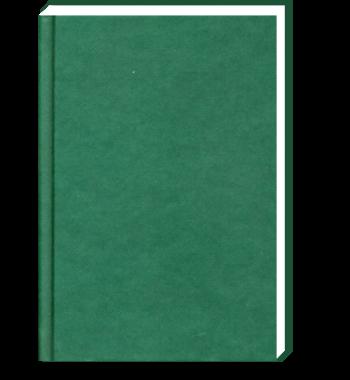 Dummie A6 Groen