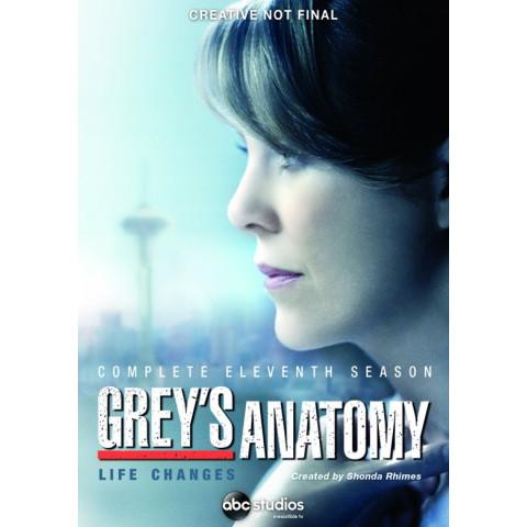 Grey's anatomy - Seizoen 11