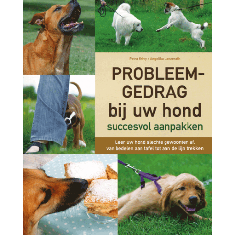 Probleemgedrag bij uw hond succesvol aanpakken