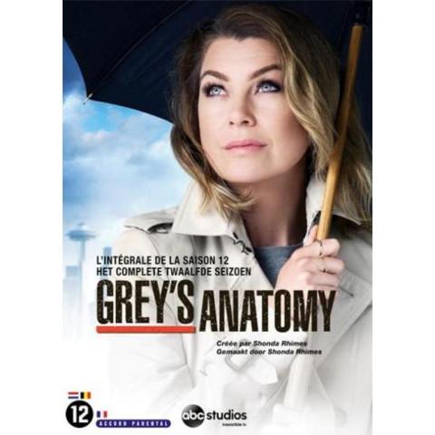 Grey's anatomy - Seizoen 12