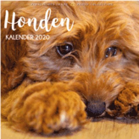 Kalender 2020: Honden