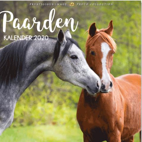 Kalender 2020: Paarden