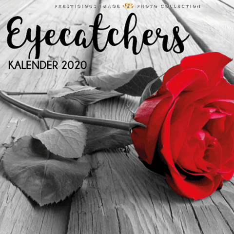 Kalender 2020: Eyecatchers
