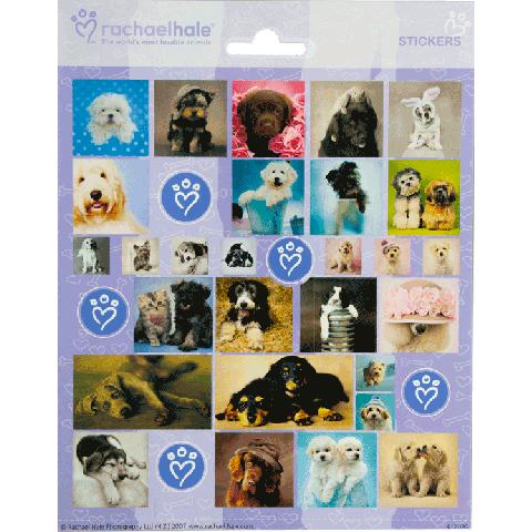 Sticker sheet Rachel Hale Animal