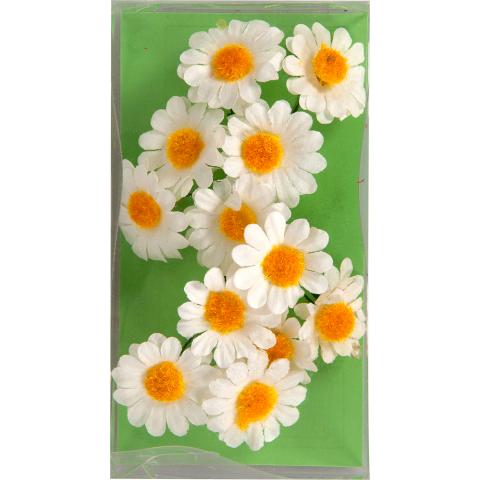Mini bloemen ass hobby flora